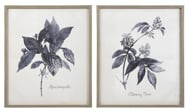 Picture of Efren Wall Art (Set of 2)